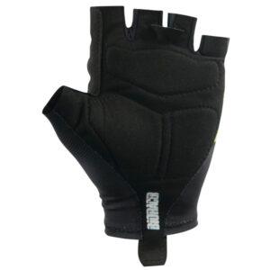 Gloves One Summer 2017 Back